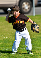 CLL T-Ball Grizzly Padres