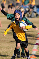 2011 SD Wallabies U8