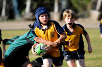 2011 SD Wallabies U10